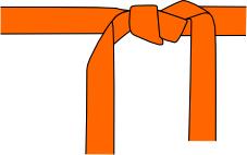 Cinturon Naranja