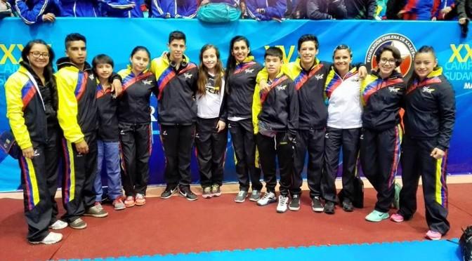 Sudamericano de Karate Chile 2015